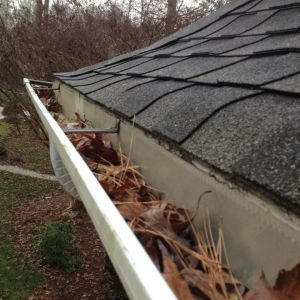 Warped roof that needs replacing